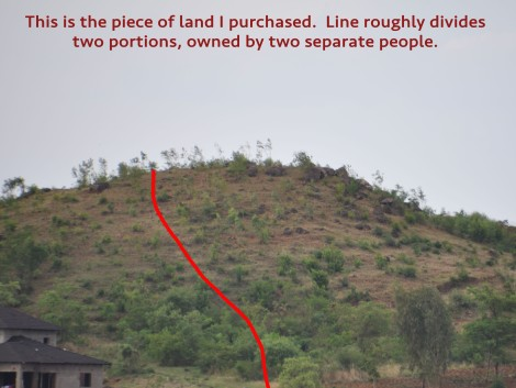 My land elevation